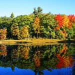 Reflections of Autumn in Michigan