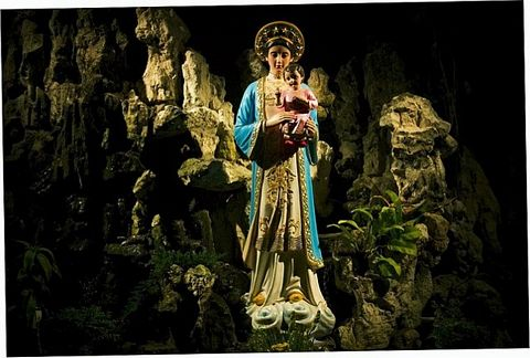 The Virgin Mary appears in a banyan tree in the jungle of Vietnam in 1798.