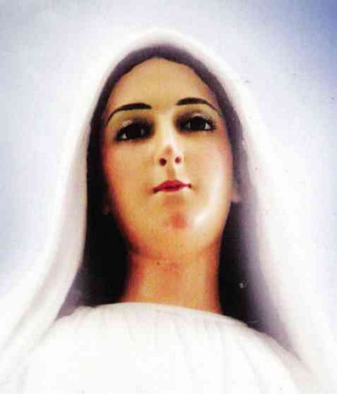 """I am Mary, Mediatrix of All Grace"""