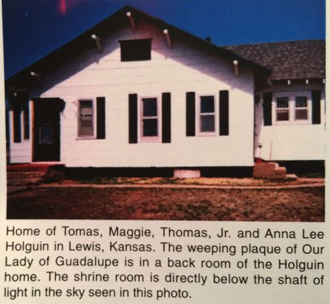 picture #2: Maggie's home where the plaque began bleeding