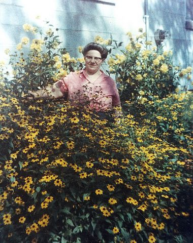 picture #5: Mary Ann in later years with her sunflower garden